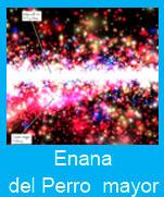 Enana-Perro-mayor