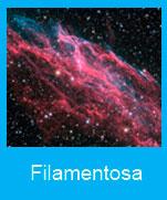 Filamentosa
