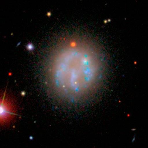 Bear Claw Galaxy, Bear Paw GalaxyNGC 2537