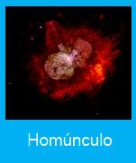 Homunculo