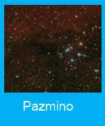 Pazmino