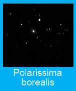 Polarissima-borealis