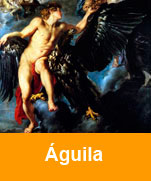 Aguila-con-acuario