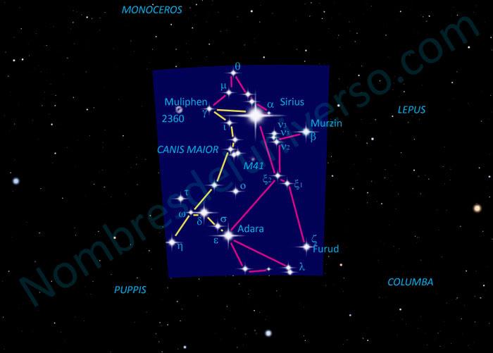 Diseño original constelación Canis Maior