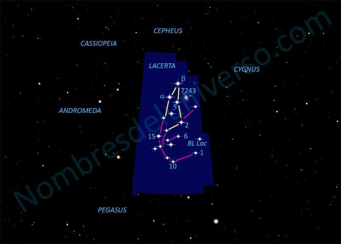 Diseño original de la constelación Lacerta