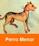 Perro-Menor.-Al-sufi.