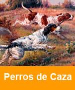 Perros-de-caza