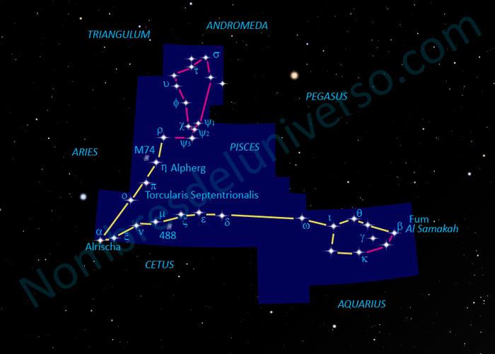 Diseño original de la constelación Pisces