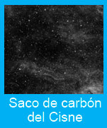 Saco-carbon-Cisne