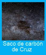 Saco-carbon-Cruz