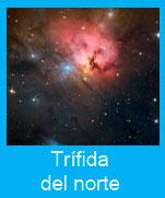 Trifida-norte